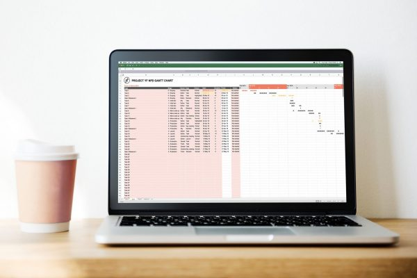 Gantt chart template for NPD and FMCG projects 2