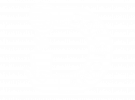 dalstons logo