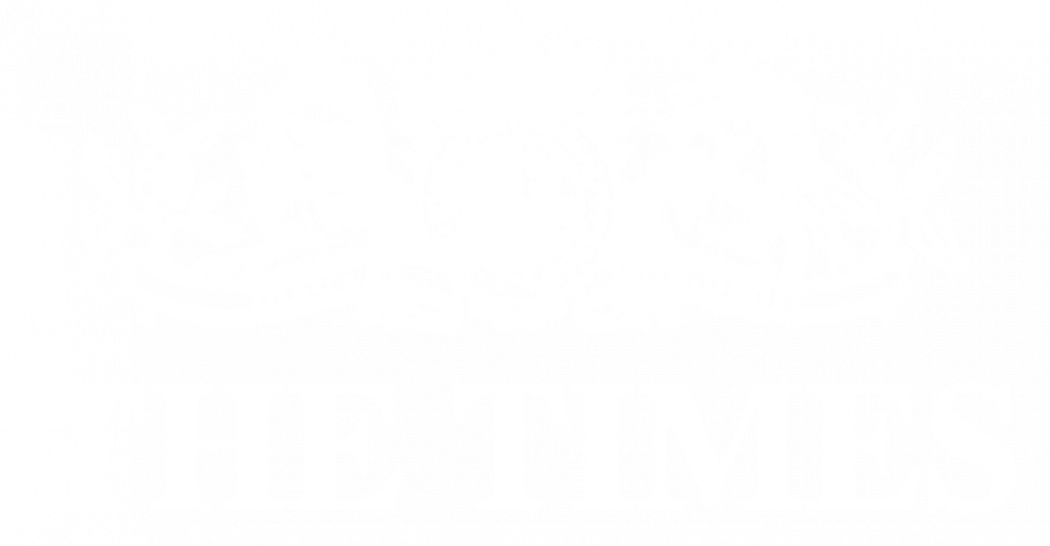 the times logo white